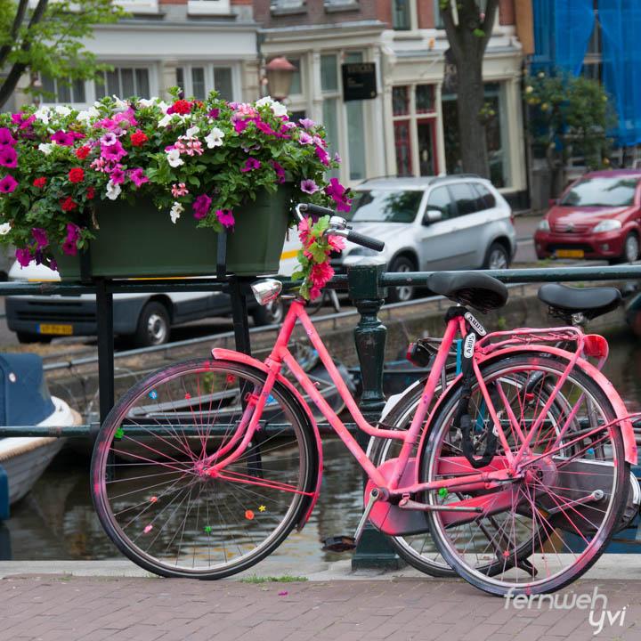 Fahrräder in Holland