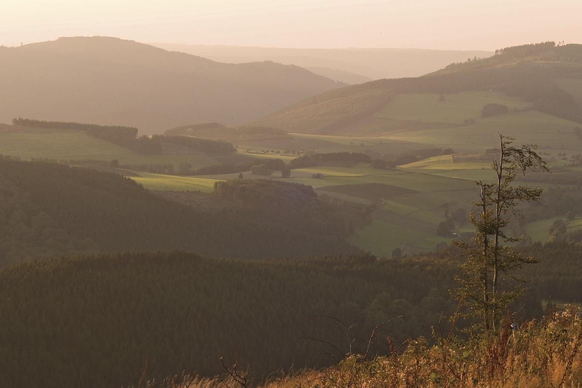 Ausblick zwischen Bruchhausen und Willingen
