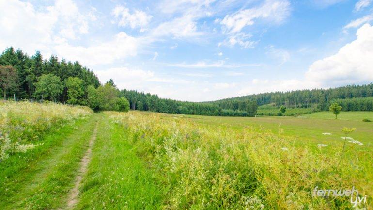 Der Weg führt bis zur Ruhrquelle fast nur über Wiesen und Felder
