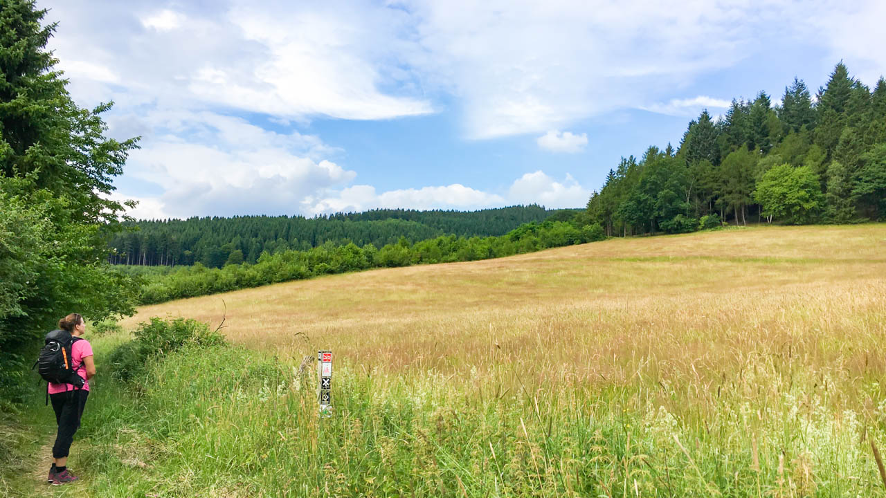 Yvi am Kornfeld auf dem Rothaarsteig