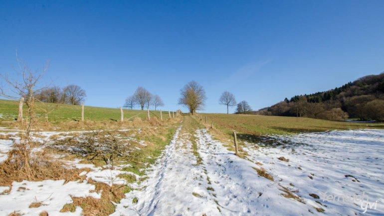 Der Weg führt über schneebedeckte Wiesen