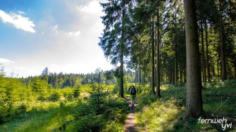 Yvi auf naturnahem Wanderweg
